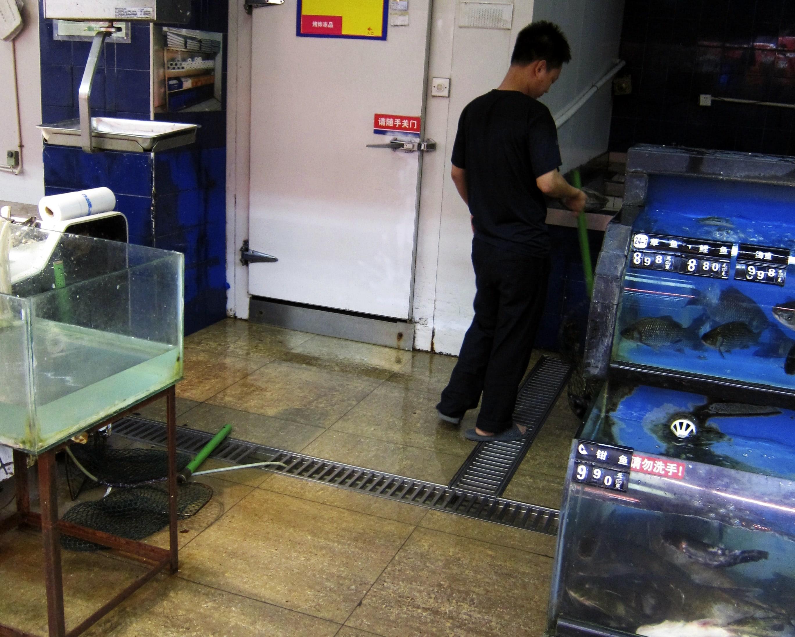 Zakupy w Chinach - ryby