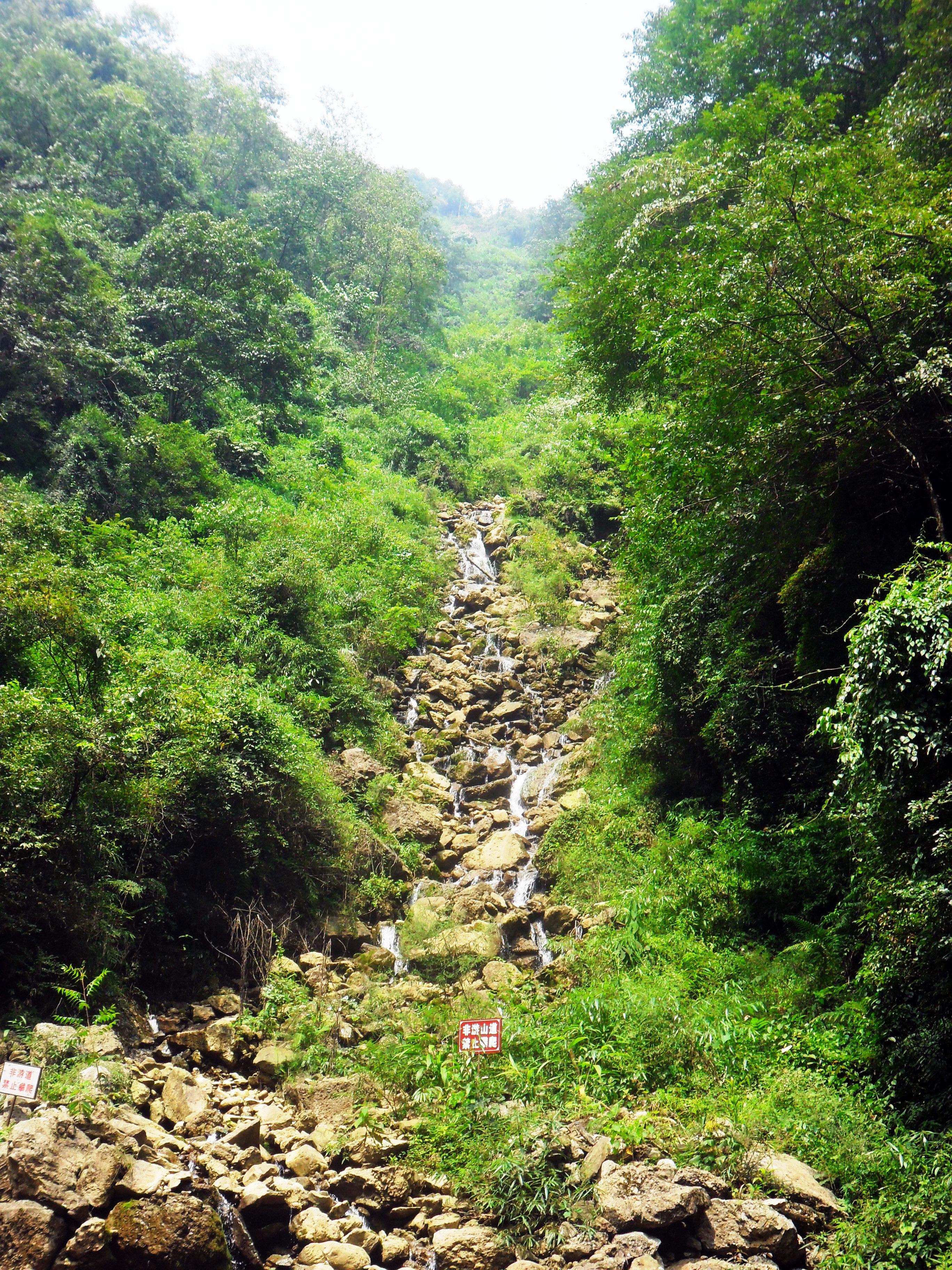 Góra Qingcheng Syczuan