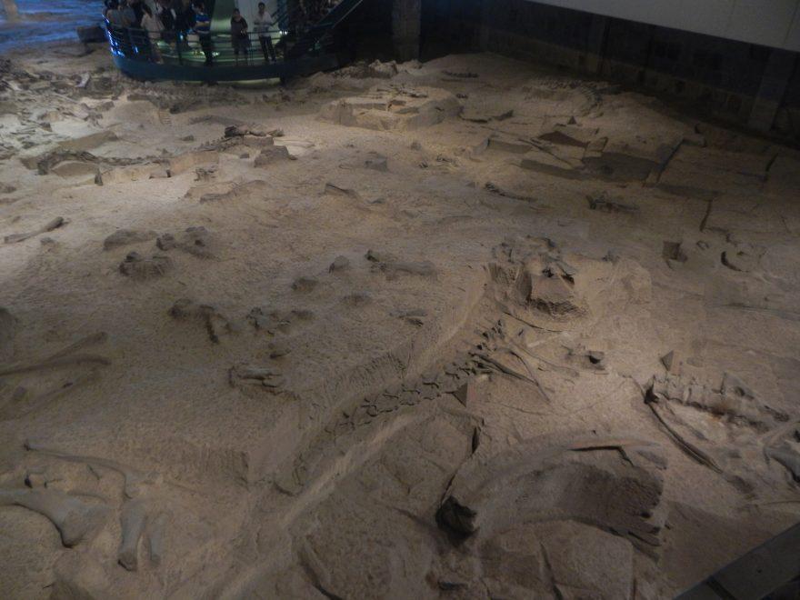 Muzeum Dinozaurów Zigong